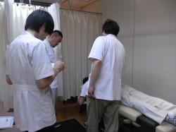 解剖学、生理学、病理学プログラム